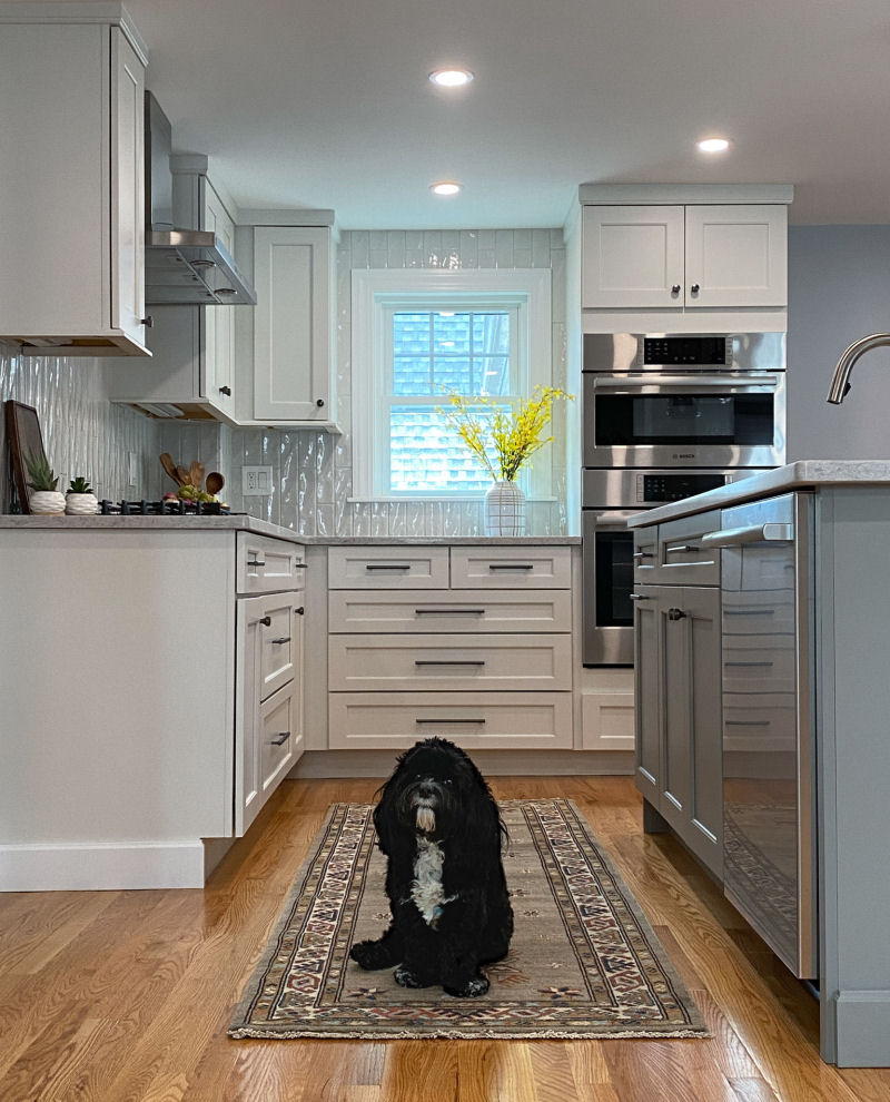 Wakefield Kitchen Remodel Project Bailey Puppy